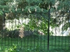 iron-art-fences-05.jpg